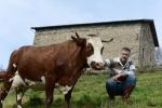 ferme des supeyres antoine de boismenu  (6)_01