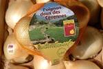 oignon-doux-st-andre-de-majencoules-4