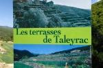 taleyrac-1