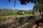 vins-de-banyuls-3-w