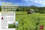 herbes de provence 1