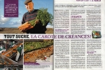 carotte-de-creances-1-web