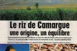 riz-de-camargue-web