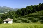 pays-basque-st-jean-p-de-porc-2-web