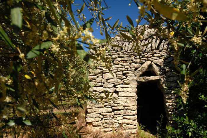 Capitelle de pierre sèche dans le terroir oléicole du sommiérois, Gard - France