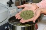 copamivar labo melange 4 herbes  (1)_01