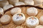 fromagerie-7