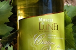 lunel-muscat-4